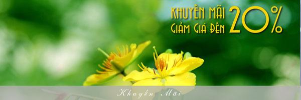 Khuyen-mai